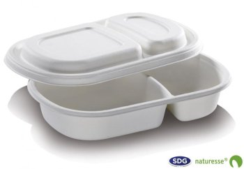 Cellulose pulp Tray two sections with removable lid 690 ml 24 x 15,5x 4 cm - 5364