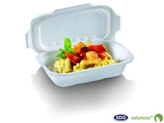 Take-away tray in cellulose pulp 1000ml, 230x155x57mm - N396