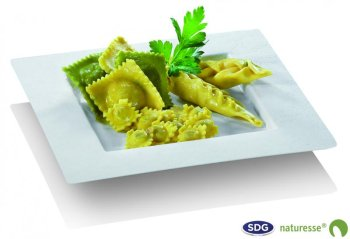 Assiette carrée DEDRA en pulpe de cellulose- N463